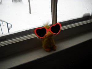 George on the windowsill