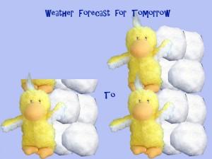 weatherforecassat