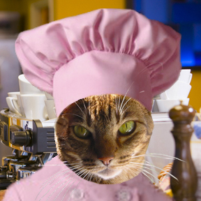 Chef Java the Cat