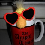George the Duck and his The Anipal Times Mug