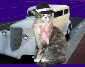 TinyPearlCat the Gangster