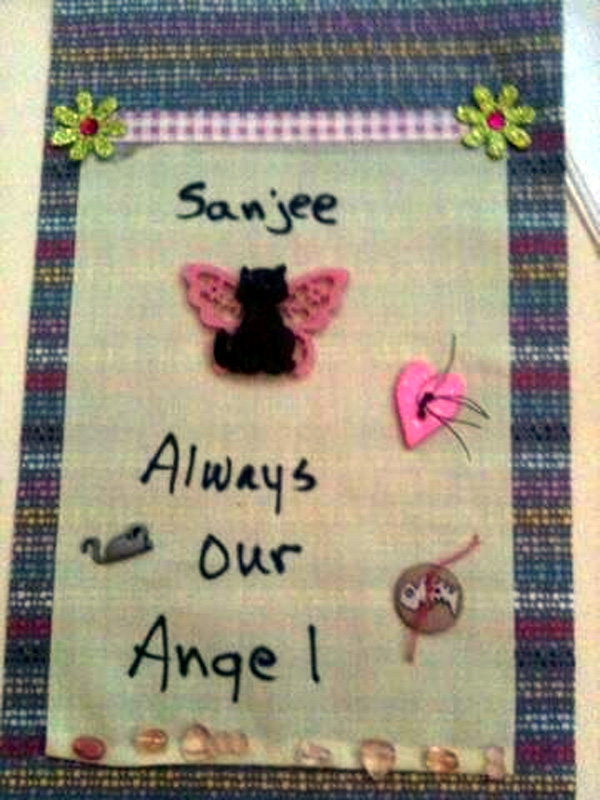 Tribute Flag by Wanda Kruse for Sanjee at Blogpaws 2013