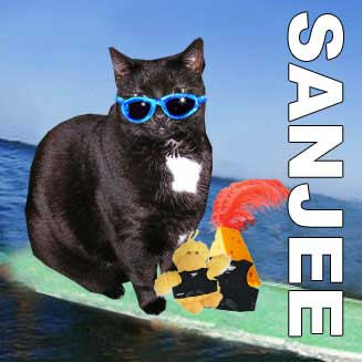 Sanjee surfing with George